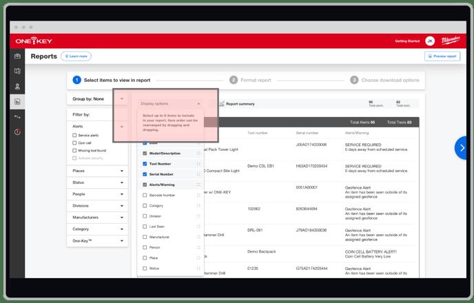 screenshot of alert display options